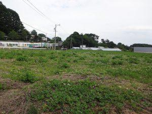 国道から見た現地。すぐ横を電車が通ります。
