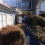 南側にある庭(2021年1月)
