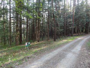 北側道路と現地(2019年5月)
