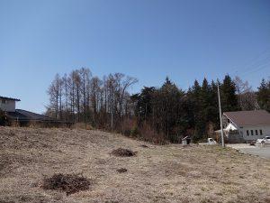 東側隣地K区画より撮影(2020年4月)