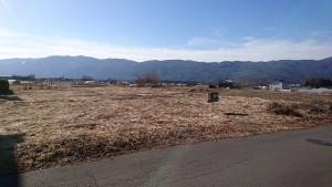 道路からの土地2017年1月撮影