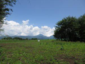 物件北東方向の蓼科山の眺望(2019年7月)