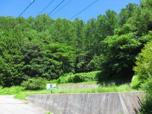 前面道路から物件を撮影(2019年8月)