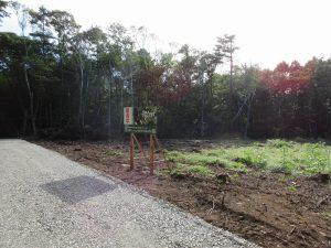 前面道路から西方向を撮影(2019年9月)