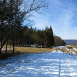 前面道路から西方向を撮影(2020年1月)