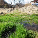 敷地の南側にある水路(2020年2月)
