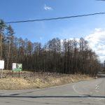 西側道路南方向を撮影(2020年3月)