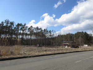 東側道路 南東から撮影(2020年3月)