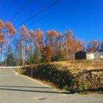 南西側道路から北東方向を撮影(2019年11月)