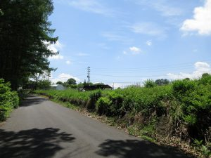 東側道路南側から撮影(2020年5月)