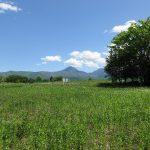 物件北東方向の蓼科山の眺望(2020年5月)