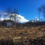 物件から東方向の八ケ岳眺望(2020年2月)