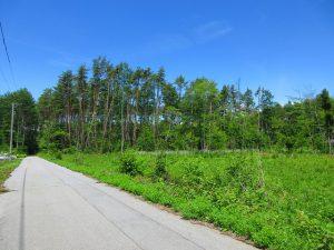 南側道路の東側から物件を撮影(2020年6月)