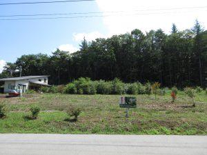 前面道路西側から撮影(2020年8月)