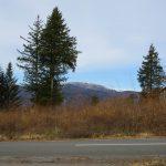 前面道路から物件を撮影(2020年12月)