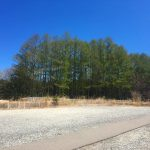 駐車場から東方向を撮影(2021年4月)