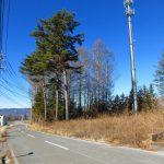 前面道路西方向を撮影(2021年1月)