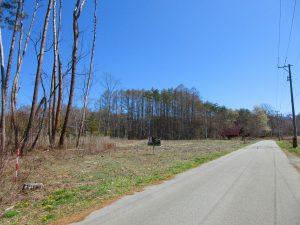 前面道路西側から撮影(2021年4月)