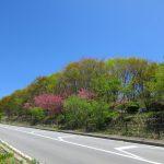 ズームライン北西側から撮影(2021年5月)