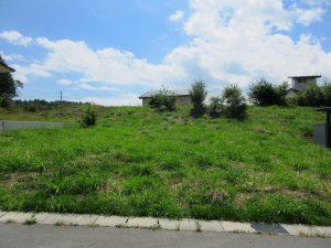 前面道路北側から物件を撮影(2021年9月)