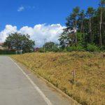 西側道路の南側から撮影(2021年9月)