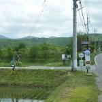 西側道路から撮影