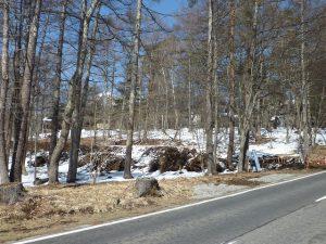 道路からの現地(2017年4月撮影)