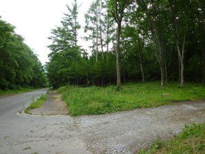東側から撮影グリーンライン(2017年6月)