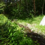 敷地北東を流れる弓振川