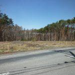 前面道路東側から撮影(2018年4月)