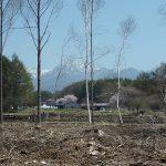 物件から東側を撮影・八ヶ岳の眺望と桜(2018年4月)