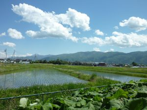 物件南方向甲斐駒ヶ岳の眺望