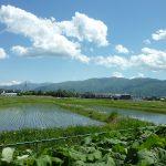 敷地南側に見える入笠山(2018年5月)