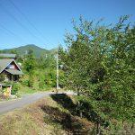 前面道路から見える八ヶ岳連峰の編笠岳(2018年8月)