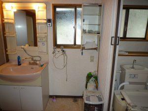 洗面台とトイレ、洗濯機も置けます