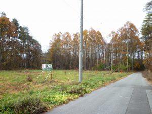 前面道路東側から撮影(2018年11月)