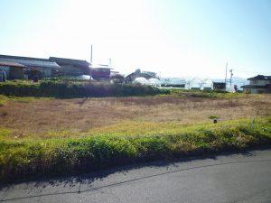前面道路から撮影(2018年11月)