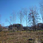 物件から見える北八ヶ岳連峰(2017年11月)