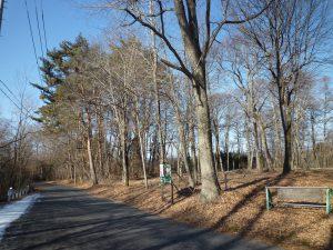 前面道路から物件を撮影(2019年1月)