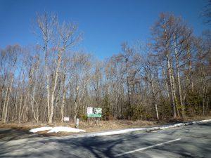 前面道路南側から撮影(2019年2月)