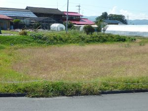 前面道路からの敷地(2017年9月)