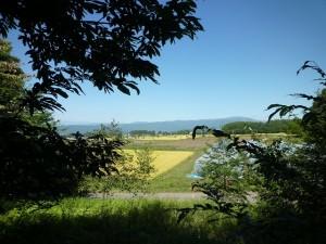 現地からみた北側の風景