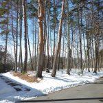 東側から撮影左が未舗装村道、右は舗装村道